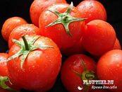 помидор (173x130, 6Kb)