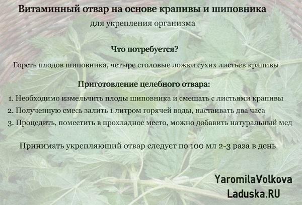 4716146_yukreplausiyotvarkrapivasipovnik (600x408, 102Kb)
