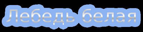 5845504_coollogo_com199952472 (497x114, 20Kb)