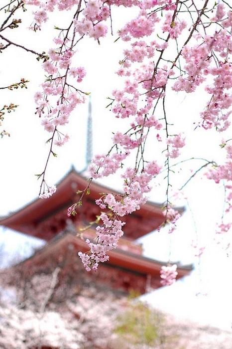 Hramy-i-pagody-Yaponii (466x700, 128Kb)