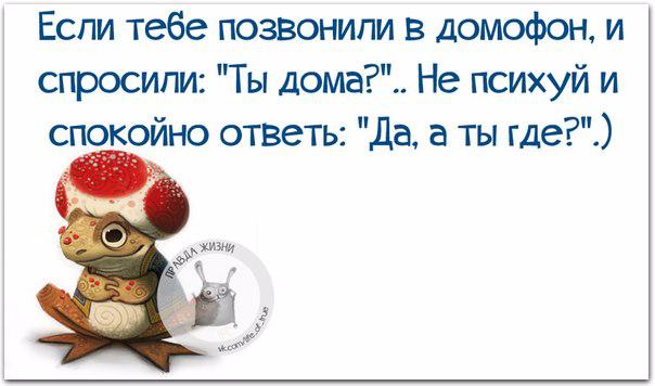 1432150693_frazki-6 (604x356, 158Kb)