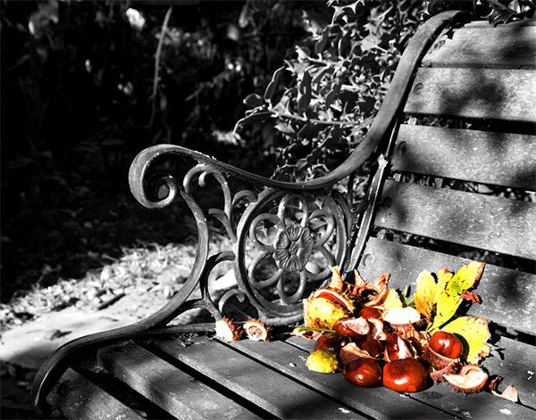 Autumn_Bench (600x471, 245Kb)