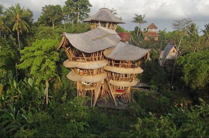 бамбуковые дома Элоры Харди 3 (700x462, 316Kb)