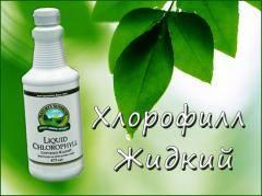 ХЛОРОФИЛЛ (240x179, 9Kb)