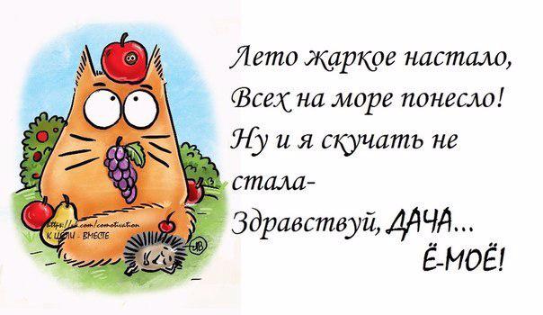 1401389603_frazochki-1 (604x350, 165Kb)