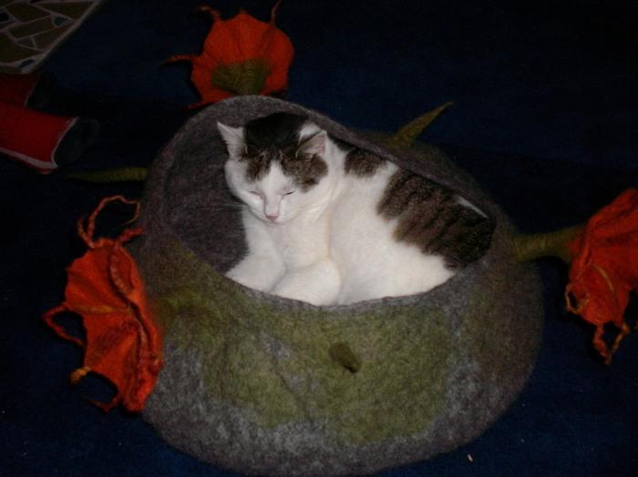 войлочные лежанки для кошек 2 (700x524, 244Kb)