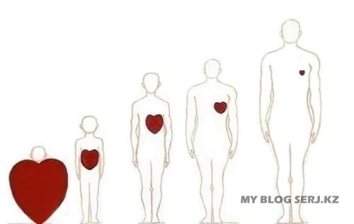 У ребёнка большое сердце, а с годами и жизненным опытом человек черствеет. (500x316, 18Kb)