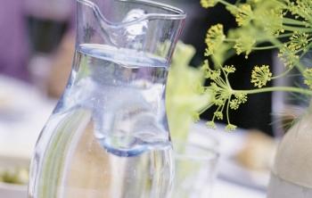 Роспотребнадзор рассказал, в каких регионах России от питьевой воды можно заболеть (350x222, 62Kb)