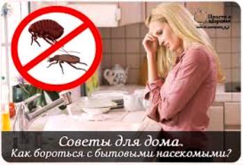 насекомые (349x237, 19Kb)