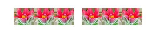 0_125f59_8a45254c_L (500x100, 19Kb)