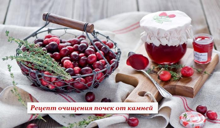 1433951478_Recept_ochischeniya_pochek_ot_kamney (700x410, 464Kb)
