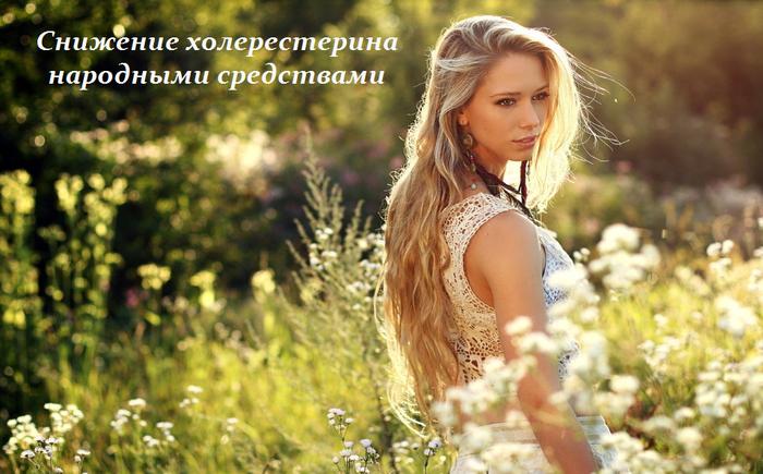 1433952054_Snizhenie_holeresterina_narodnuymi_sredstvami (700x435, 526Kb)