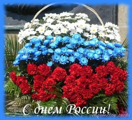 4924802_den_rossii4 (425x385, 62Kb)
