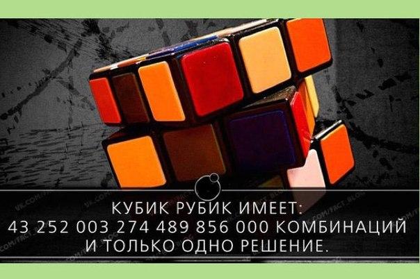 5640974_Cnnqn34tTY8 (604x402, 56Kb)