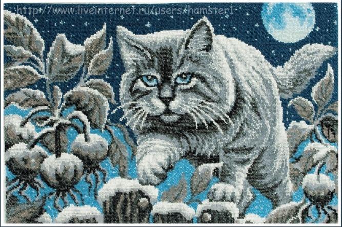 Схема Лунный кот