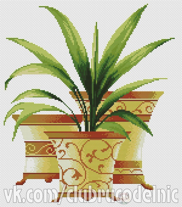 Три пальмы. Юка (617x700, 268Kb)