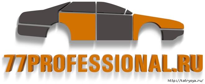 logo-77profissional-092 (660x271, 64Kb)