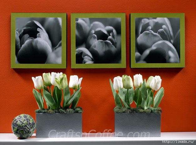 diy-tulip-photo-wall-art (625x462, 150Kb)