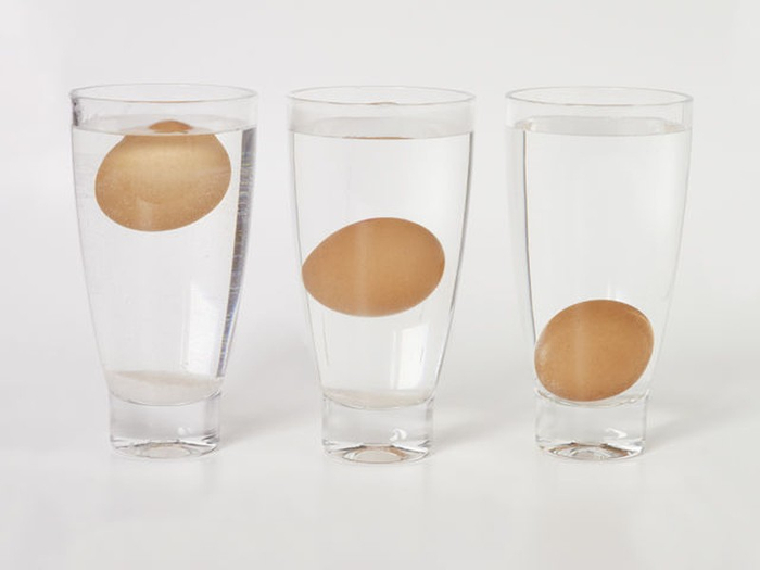 Старое яйцо всплывёт (700x525, 122Kb)