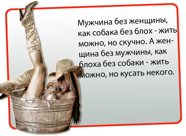 seksualnaya-zadnitsa-muzhskaya