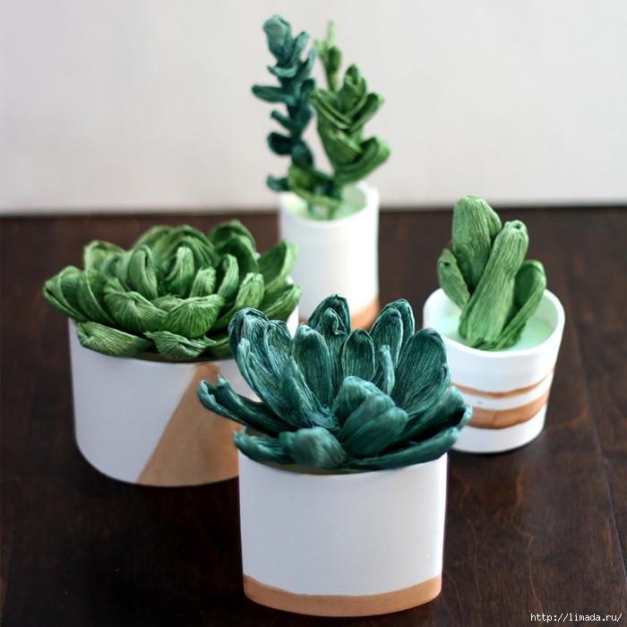 SucculentsSquare1 (700x700, 305Kb)