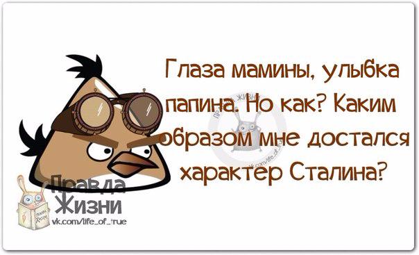 1401822210_frazochki-4 (604x367, 164Kb)