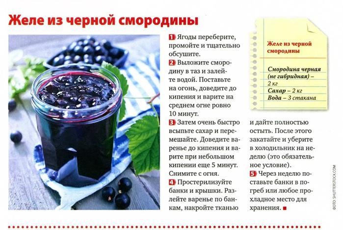 Рецепты заготовок черной смородины на зиму