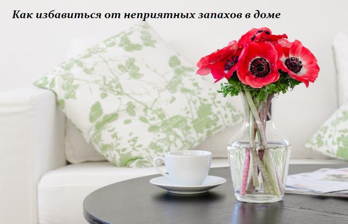 1460201851_Kak_izbavit_sya_ot_nepriyatnuyh_zapahov_v_dome (700x451, 328Kb)