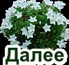 4809770_YaVesnapodsnejniki2 (100x94, 21Kb)