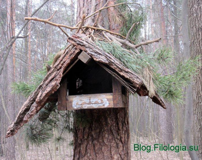 Кормушка для птиц на дереве крупным планом (699x554, 104Kb)