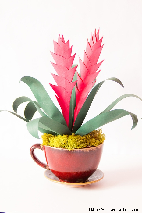 Комнатный цветок АНАНАС из бумаги (1) (466x700, 154Kb)