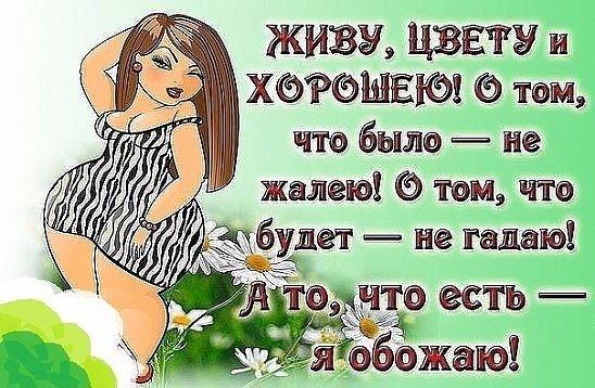 5053532_jivycvety (548x358, 70Kb)