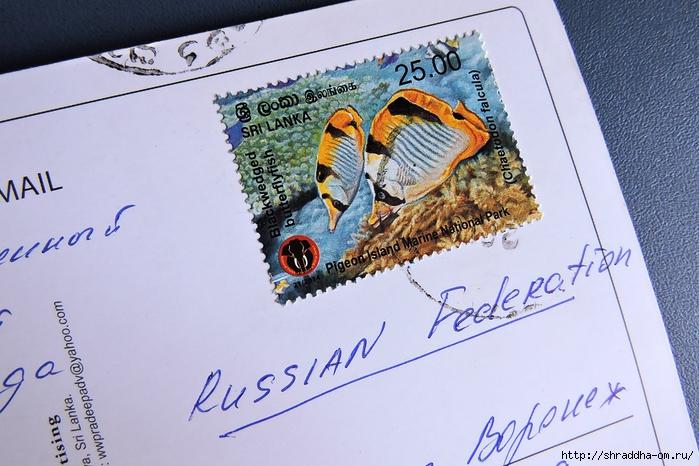 открытка от Кати (2) (700x466, 280Kb)