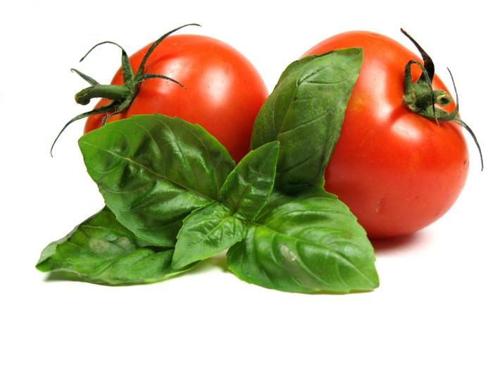 2380598_tomatoes (700x525, 185Kb)