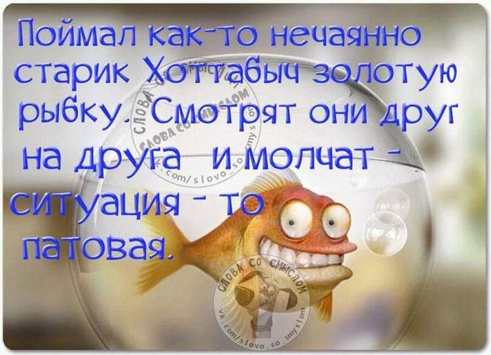 12512648_1741148742786978_5890020370182101831_n (700x505, 372Kb)