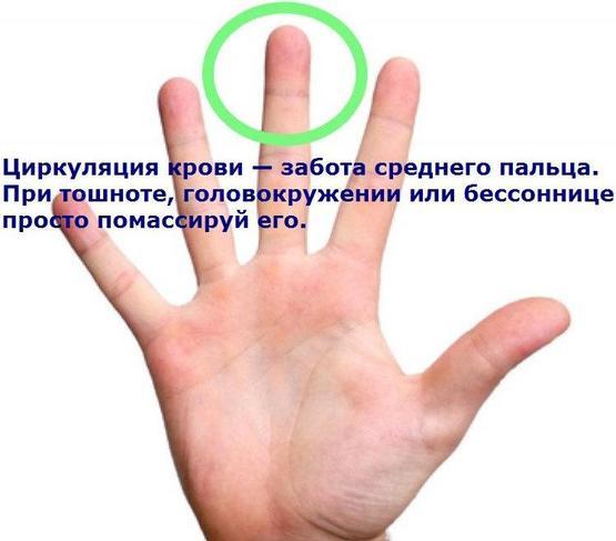 5462122_3__oie_Y5heKbmEFdBn (555x487, 27Kb)