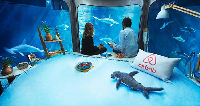 подводная спальня с акулами 2 (700x370, 308Kb)