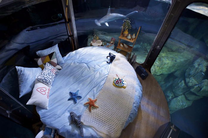подводная спальня с акулами 4 (700x466, 319Kb)