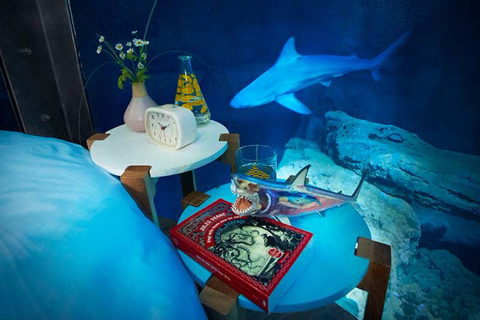подводная спальня с акулами 6 (700x466, 337Kb)