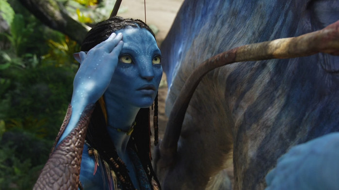 Avatar_Extended_Cut_BDRip_720p.mkv_snapshot_00.59.48__2010.12.25_00.10.22_ (700x393, 61Kb)
