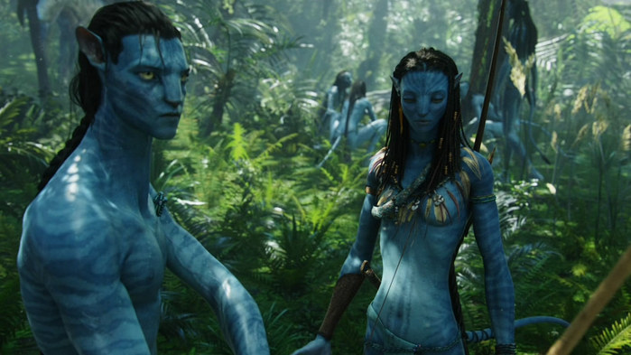 Avatar_Extended_Cut_BDRip_720p.mkv_snapshot_01.07.43__2010.12.26_23.36.10_ (700x393, 84Kb)