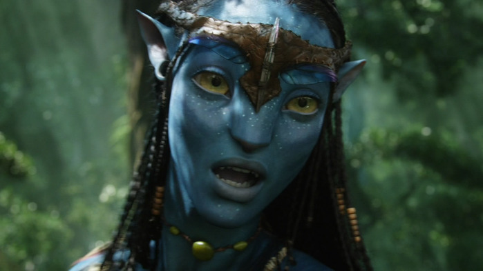 Avatar_Extended_Cut_BDRip_720p.mkv_snapshot_01.28.57__2011.01.05_17.48.44_ (700x393, 60Kb)