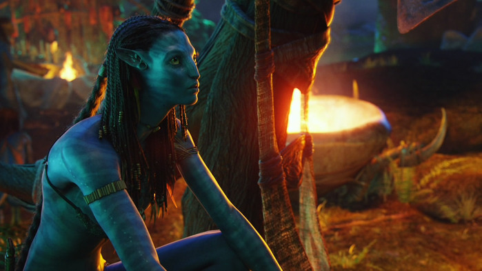 Avatar_Extended_Cut_BDRip_720p.mkv_snapshot_01.29.35__2011.01.06_00.44.03_ (700x393, 89Kb)
