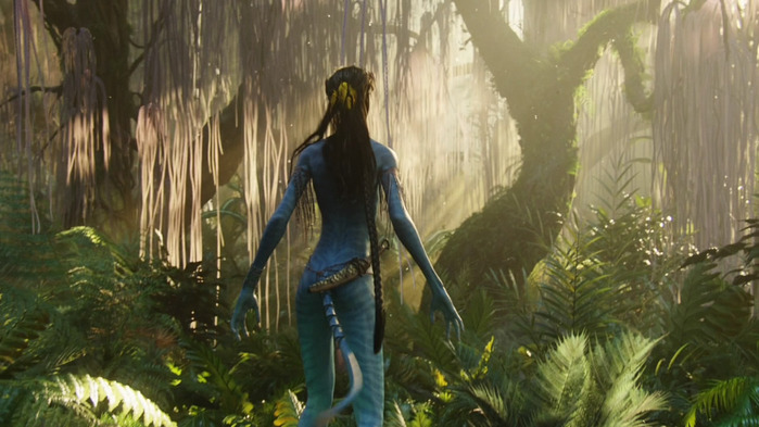Avatar_Extended_Cut_BDRip_720p.mkv_snapshot_01.37.54__2011.01.08_03.04.22_ (700x393, 102Kb)