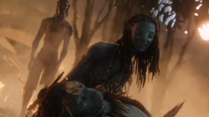 Avatar_Extended_Cut_BDRip_720p.mkv_snapshot_02.00.42__2011.01.14_01.13.56_ (700x393, 58Kb)