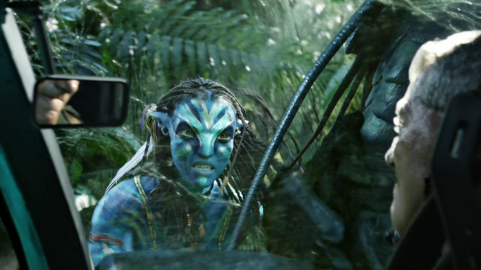 Avatar_Extended_Cut_BDRip_720p.mkv_snapshot_02.40.47_[2011.02.22_22.07.46] (700x393, 85Kb)