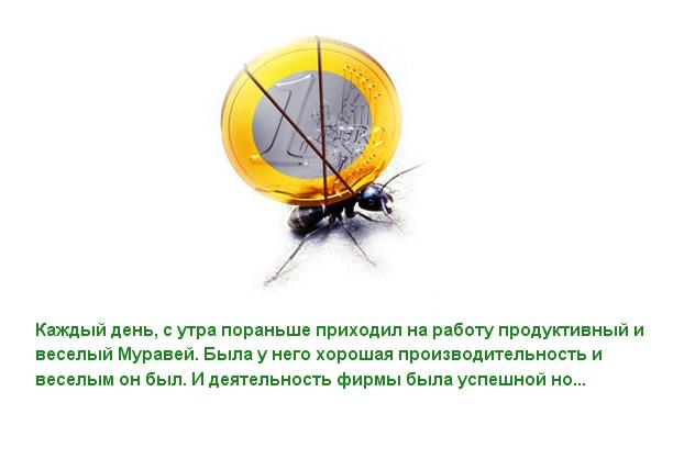 77076773_large_01 (622x418, 120Kb)