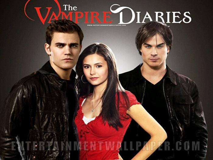 the_vampire_diaries_4_1024x768 (700x525, 138Kb)