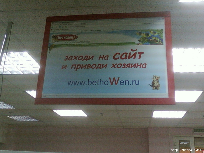 bethoWen