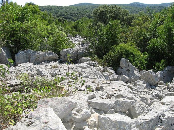 Les cascades du Sautadet - La Roque sur Ceze 25084